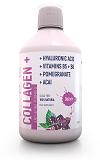 витаминно-минеральный комплекс DeLixir: Collagen